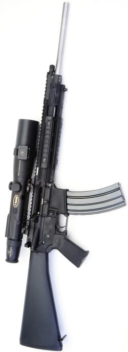 The Ruger Sr556 Meets Eliminator Ii Real Guns A