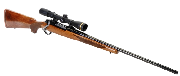 The Ruger Hawkeye in 30-06 Springfield